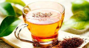 Чай ротбуш. Экзотические разновидности чая.Чай ротбуш.