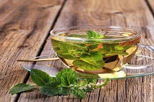 Экзотические разновидности чая.Чай травяной с мелиссой.
