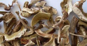 Как сушить грибы правильно